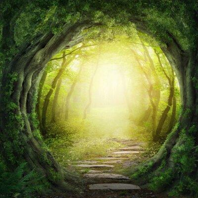 Canvastavlor Väg i mörk skog