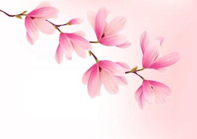 Canvastavlor Valentine bakgrund med rosa blommor. Vektor.