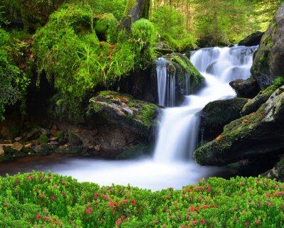 Canvastavlor Vattenfall i nationalparken Sumava-Tjeckien