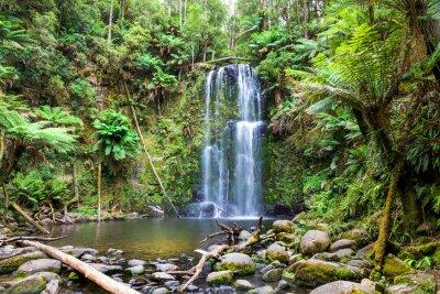 Canvastavlor vattenfall Tasmanien