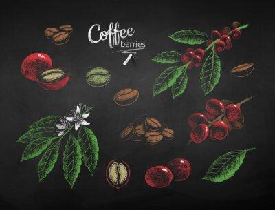 Canvastavlor Vector chalk drawn set of coffee illustrations