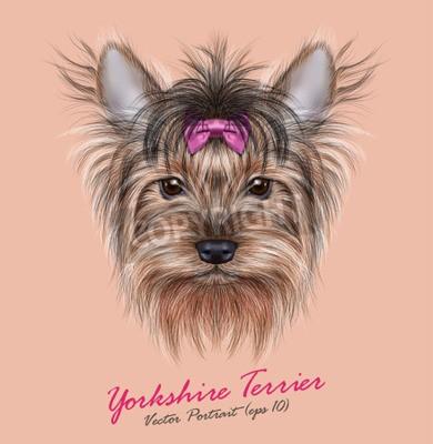 Canvastavlor Vektor Porträtt av en inhemsk hund. Söt chef för Yorkshire terrier på ping bakgrund.