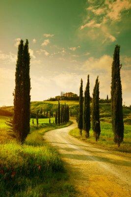 Canvastavlor Vintage Tuscany countryside landscape