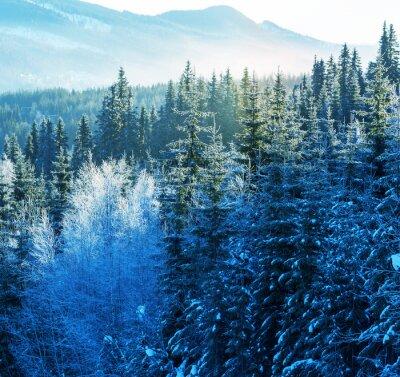Canvastavlor vinter berg
