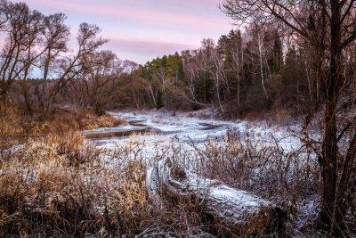 Canvastavlor Vinter eller våren floden och trä