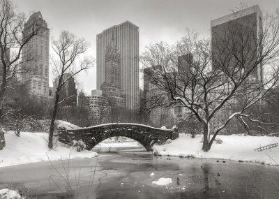 Canvastavlor Vinterplats i Manhattan: dammen, Gapstow Bridge och Manhatta