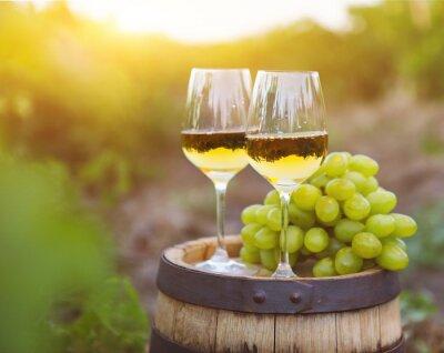 Canvastavlor Vita druvor och två glas vitt vin