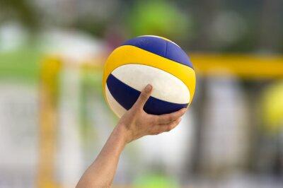 Canvastavlor Volleyboll