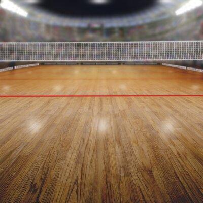 Canvastavlor Volleyboll Arena åskådare och Textutrymme