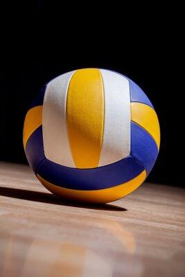 Canvastavlor Volleyboll, inomhus volleyboll, Inomhus.