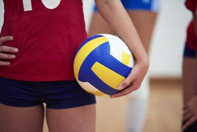 Canvastavlor volleyboll kvinna grupp