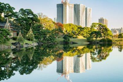 Canvastavlor Vy över Tokyo stadsbild med park