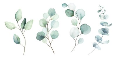 Canvastavlor Watercolor floral illustration set - green leaf branches collection, for wedding stationary, greetings, wallpapers, fashion, background. Eucalyptus, olive, green leaves, etc.