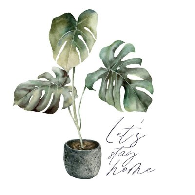 Canvastavlor Watercolor Lets stay home card with monstera. Isolation during an epidemic. Hand painted exotic plant with pot isolated on white background. Floral illustration for design, print or background.