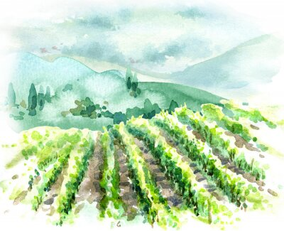 Canvastavlor Watercolor Rural Scene with Hills, Vineyard  and Trees