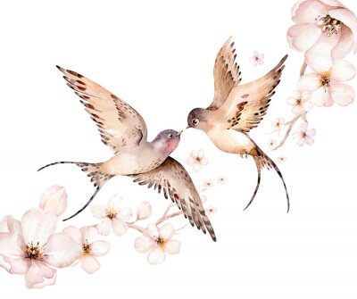 Canvastavlor Watercolor spring flying swallows isolated and blossom flowers on white background