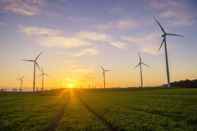 Canvastavlor Wiatraki (turbiny wiatrowe)