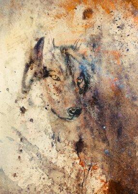 Canvastavlor Wolf målning, färg abstrakt effekt på bakgrund