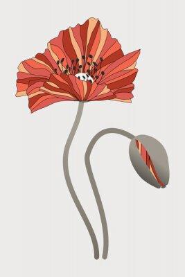 Canvastavlor бутон  и цветок мака с необычными лепестками