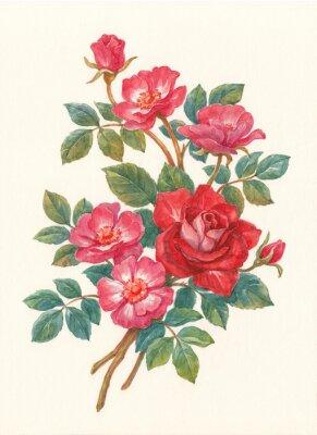 Canvastavlor Букет с цветами шиповника, акварель.