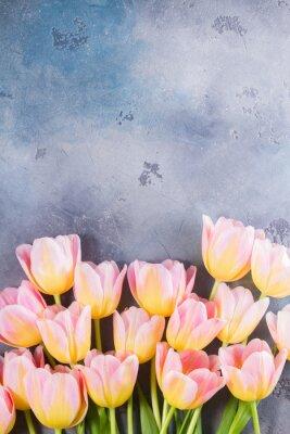Canvastavlor Gräns av rosa och gula tulpaner på grå sten bakgrund med kopia utrymme