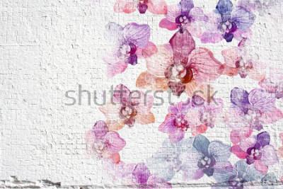 Fototapet Abstrakt vit grunge vägg stuccoature bakgrund. Väggstuck konsistens med färgglada vattenfärg blommor orkidéer.
