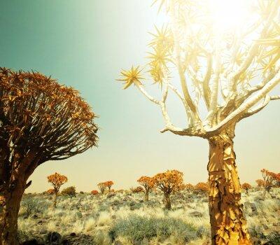 Fototapet afrikanska landskap