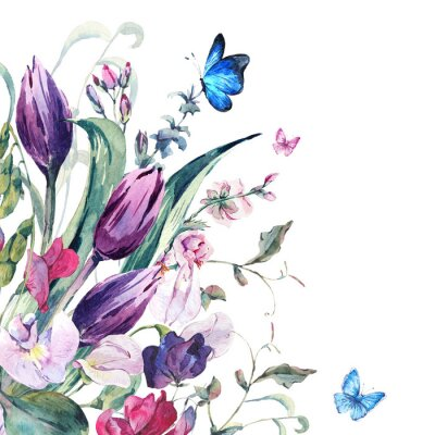 Fototapet Akvarell kort med söta ärtor, tulpaner