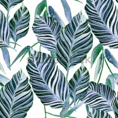 Fototapet Akvarell sömlösa mönster med tropiska blad: palmer, monstera, passionsfrukt. Vackert allover-tryck med handritade exotiska växter. Badkläder botanisk design.