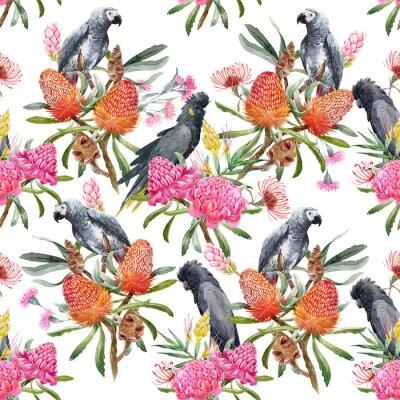 Fototapet Akvarell tropiskt australiskt mönster