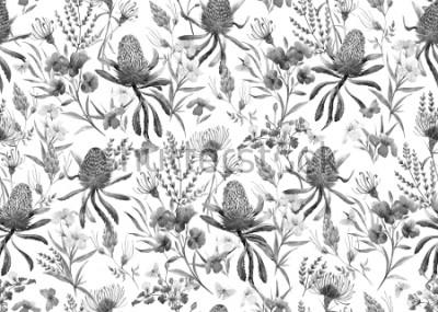 Fototapet Akvarell tropiskt mönster, blommor, banksias apelsin, oleanderrosa, exotiska australiska blommor, röda blommor Eremophila dichroantha. svartvitt svartvitt mönster