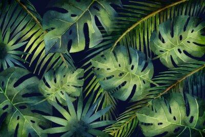 Fototapet Akvarell vektor banner Tropiska löv och grenar isolerade på mörk bakgrund.