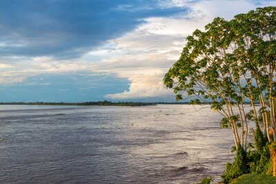 Fototapet Amazon Riverview