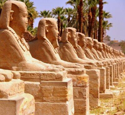 Fototapet Amun templet i Luxor