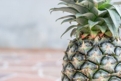 Fototapet Ananas på sten golvplattor