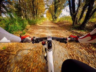 Fototapet andando i bicicletta i autunno i campagna. POV originalmpoin perspektiv