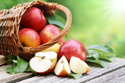 Fototapet Äpplen im Körbchen mit Sonne