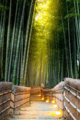 Fototapet Arashiyama Bamboo Forest