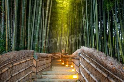 Fototapet Arashiyama Bamboo Forest i Kyoto Japan