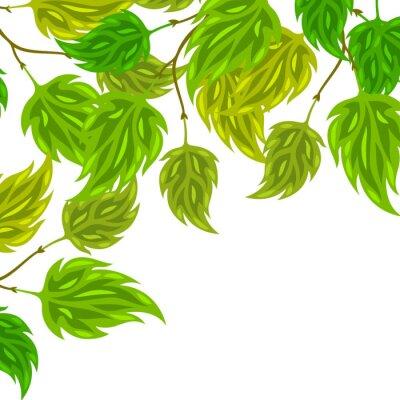 Fototapet Bakgrund av stiliserade gröna blad för gratulationskort