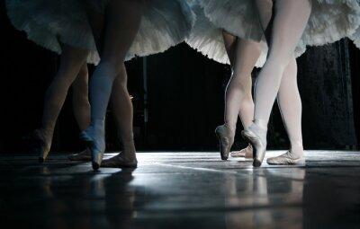 Fototapet ballerinan