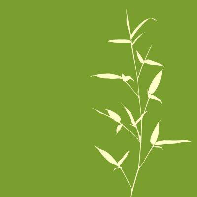 Fototapet Bamboo Silhouette på grön bakgrund