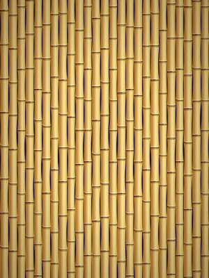 Fototapet bambu mönster