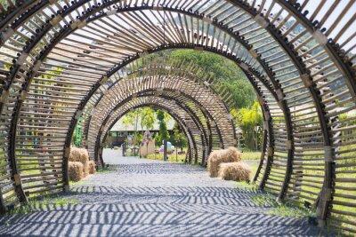 Fototapet bambu tunnel struktur i trädgården