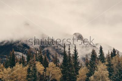 Fototapet Banff nationalpark dimmiga berg och skog i Kanada.