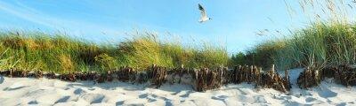 Fototapet Beach sanddyner - Panorama