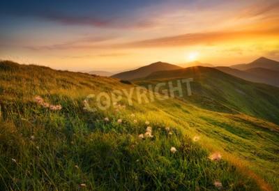 Fototapet Berg fält under solnedgång. Vackert naturlandskap