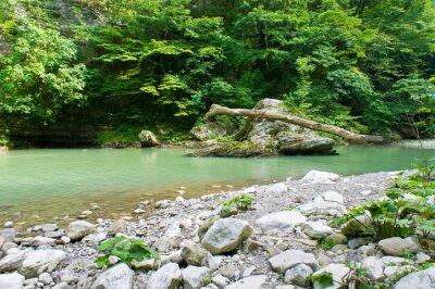 Fototapet Berg flod i Kaukasus i närheten av Sochi