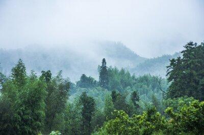 Fototapet Berg landskap i regn och dimma