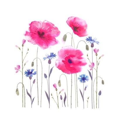Fototapet Blommor glänta med vallmo och blåklint.
